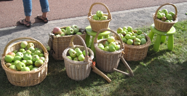Alle manden zitten bomvol appels