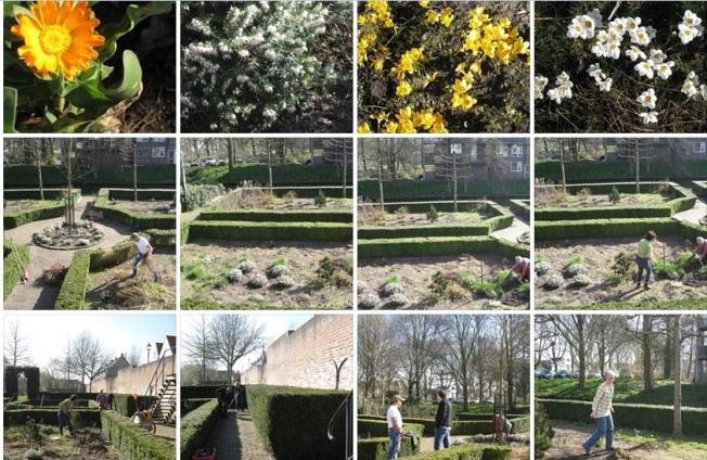 Historische Kruidentuin Vestingsplantsoen (Onderhoud door Eetbaar IJsselstein)