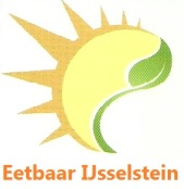logo-EIJ