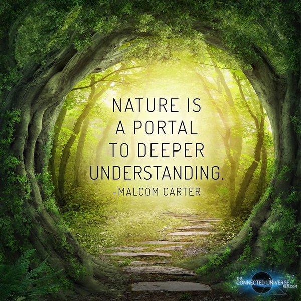 nature-deeper-understanding