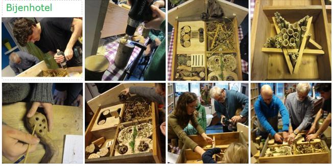 Collage-bijenhotel