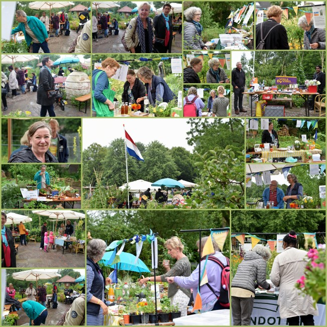collage-biomarkt-24jun17.jpg