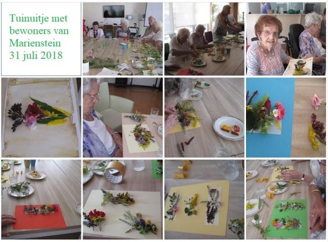 collage-tuinuitje-31jul18