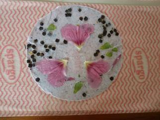 Groeipapier met stokroos bloemblaadjes en zaden