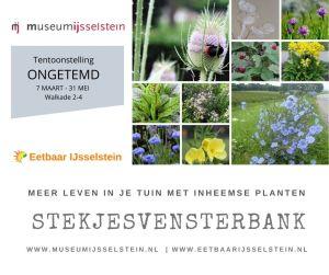 FB - Stekjesvensterbank